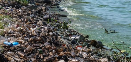 Water-pollution-india_e85_650x310
